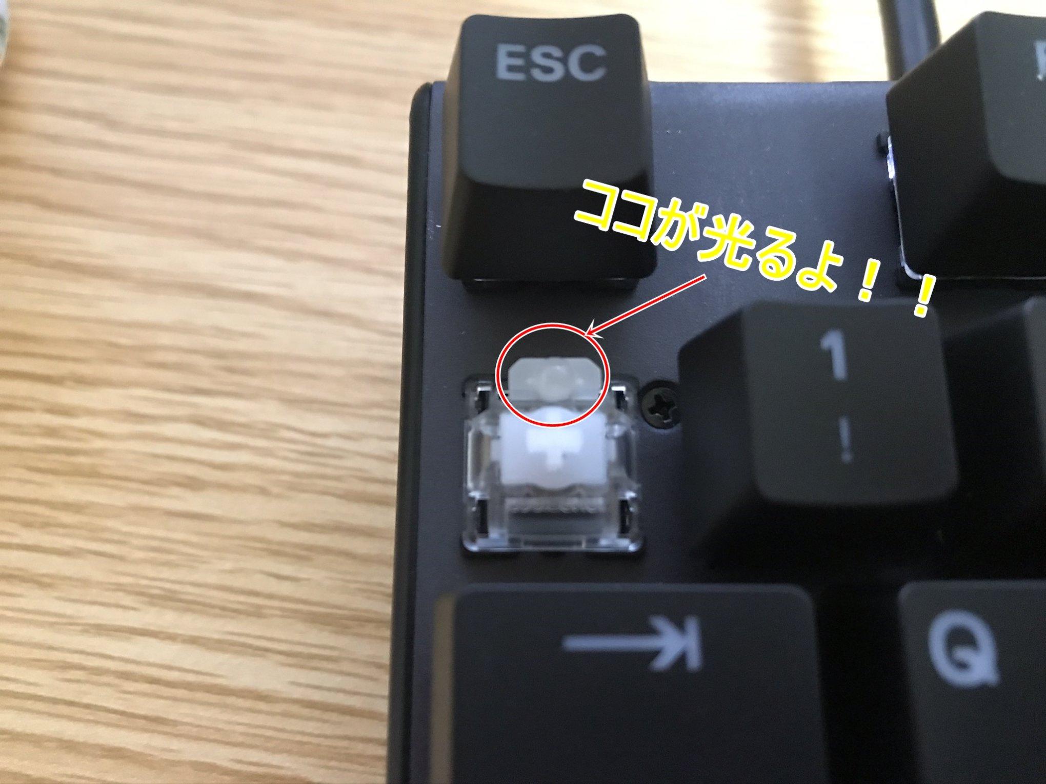 Apex Pro TKL軸が光る場所詳細