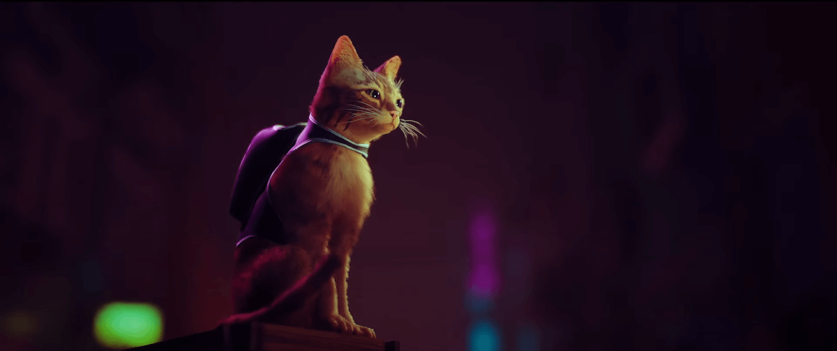 STRAYの主人公ネコ